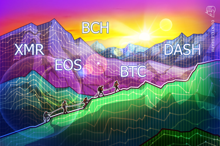 Top-5 Crypto Performers: XMR, EOS, BCH, BTC, DASH
