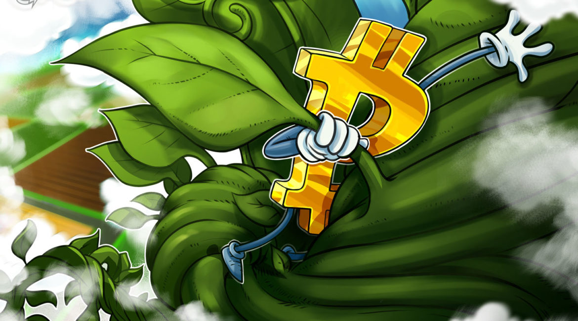 'Bulls have won' — Bitcoin whale clusters suggest BTC trend reversal