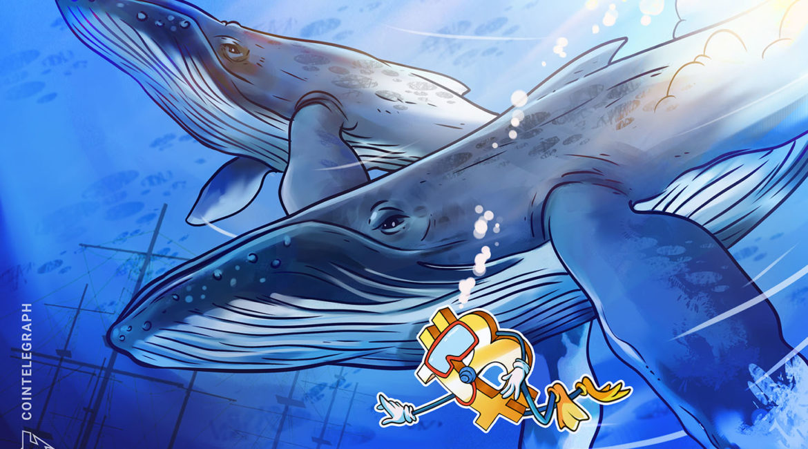 Bitcoin price volatility spikes as BTC whales sell each new high